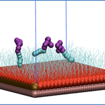 Model of surfactant molecules adsorbed on hydrophobic silica
